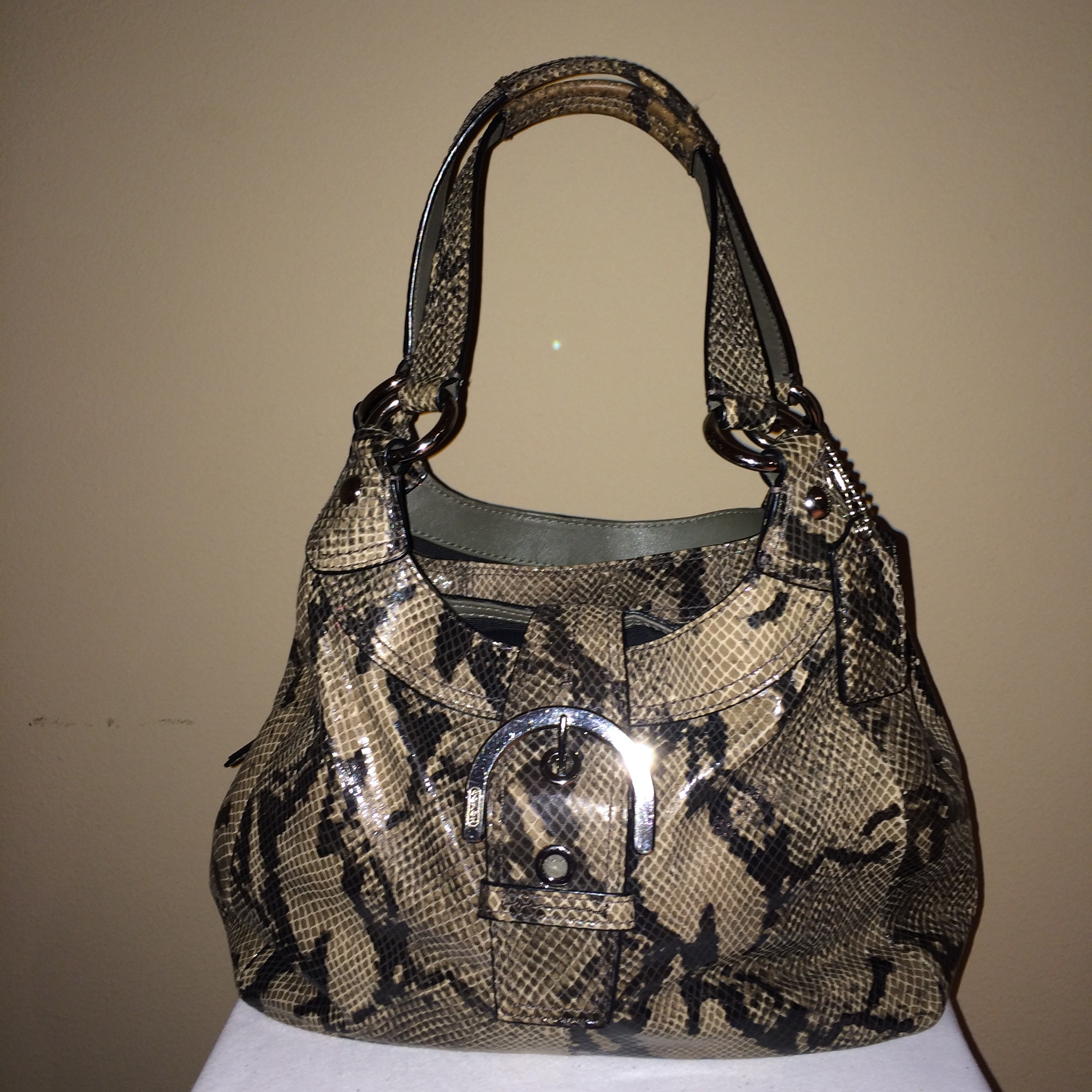 Python Coach With Buckle - front